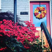 Doors of Capitol Hill__#spring #colors #