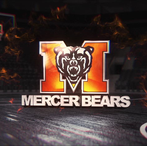 """Mercer University """"Undefeated"""" Campaign"""