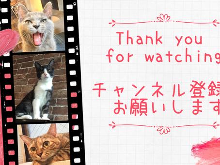 【チャンネル登録のお願い!!】