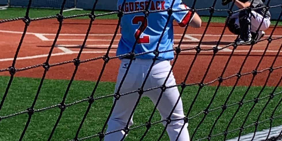Takin' It Yard Baseball Camp