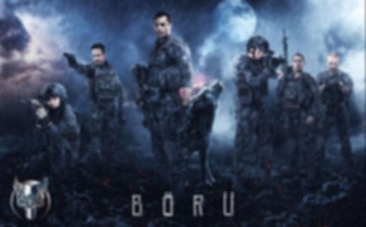 boru.jpg