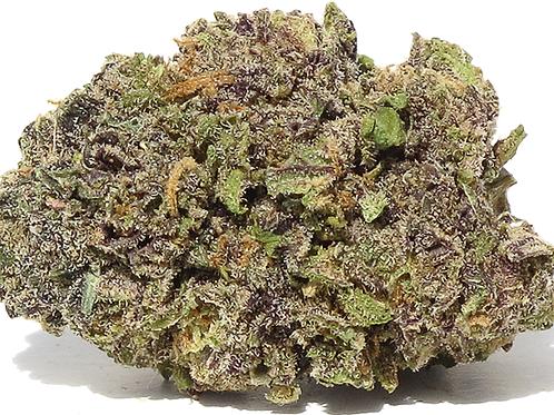 Grand Daddy Purple AAAA