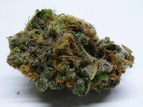 Purple Frost AAAA