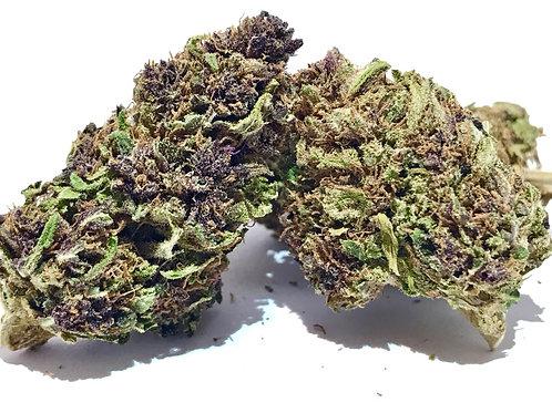 Purple Buddha AAAA