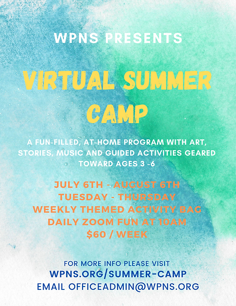 WPNS 2020 VIRTUAL CAMP.png