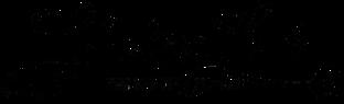 CounterLife Coach Signature Final - Transparent_edited.png