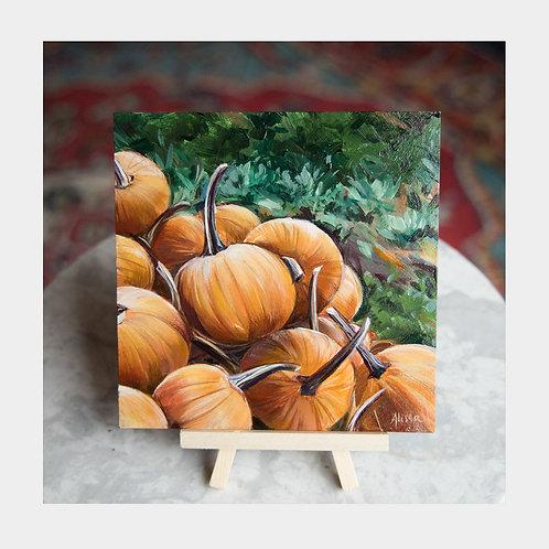 """Pumpkin Patch, 6"""" x 6"""""""