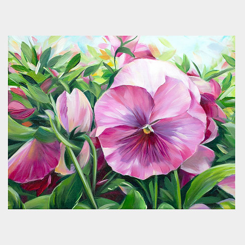 """Pink Pansy, 11"""" x 14"""""""