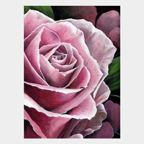 """Pink Rose, 9"""" x 12"""""""
