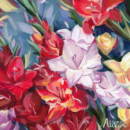 Gladiolus Love