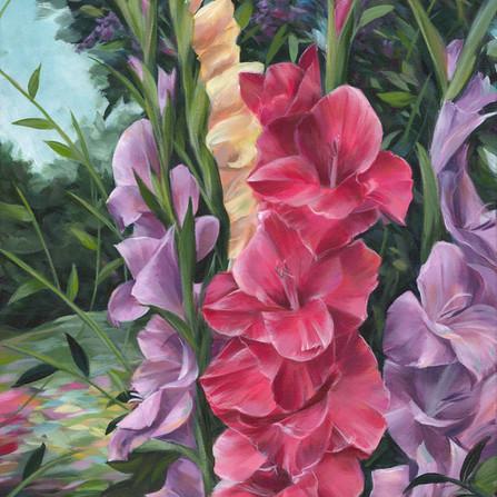 Dancing Gladiolus