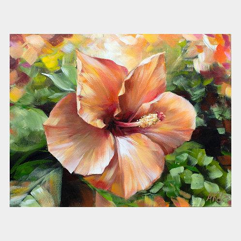 """Sunset Hibiscus, 11"""" x 14"""""""