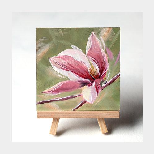 """Magnolia Majesty, 4"""" x 4"""""""