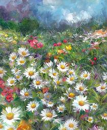Daisy Meadow3small.jpg