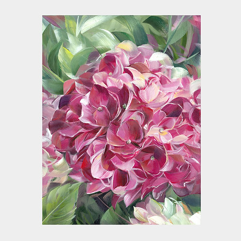 "Pink Hydrangea,12"" x 16"""