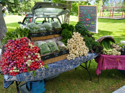 market_booth