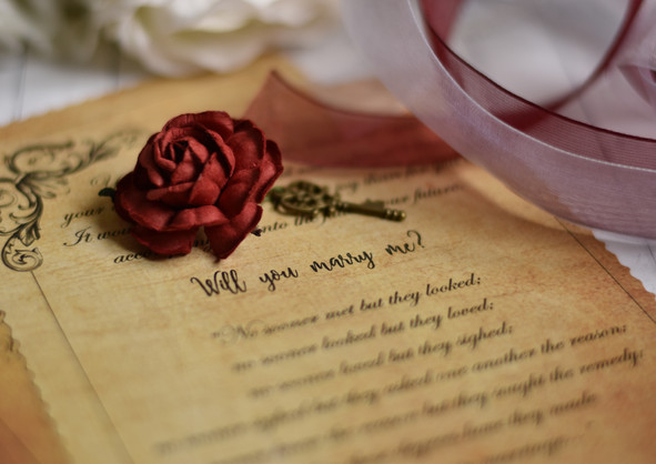 """Romantic """"Will you marry me?"""""""