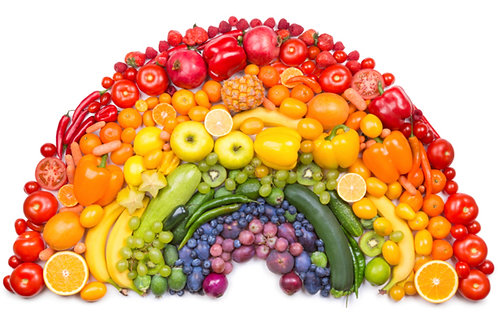 RAINBOW DIET PROTOCOL (For Download)