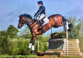 Cross country. Rider jumping pay horse over a box with hedge