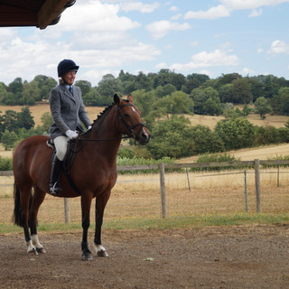 Dressage League