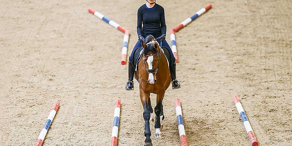 Poles/jumping or Flatwork with Rosie Sheppard