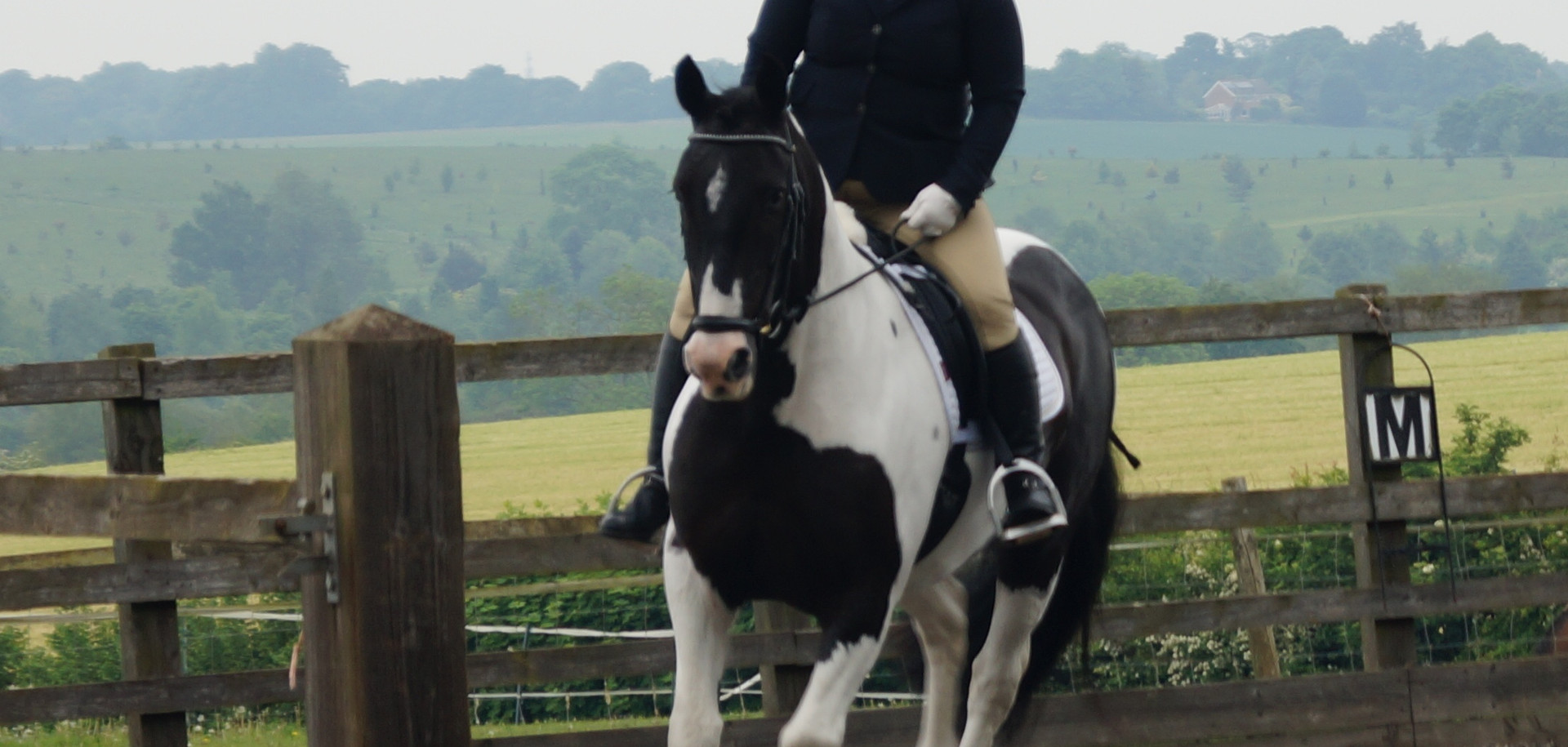Dressage 26th May 2018