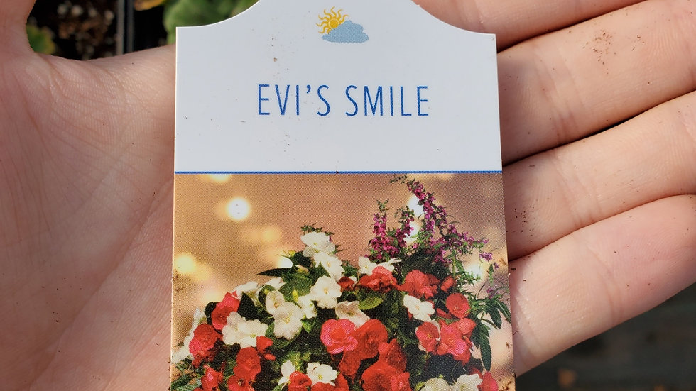 Hanging Basket-Evi's Smile