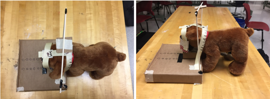 Cardboard mock-up