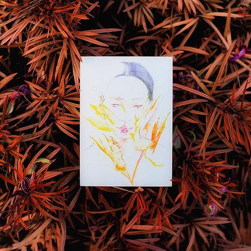 花開花落 A Time To Bloom Postcard