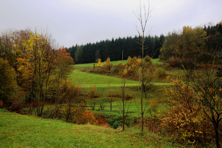 Travná u Javorníka