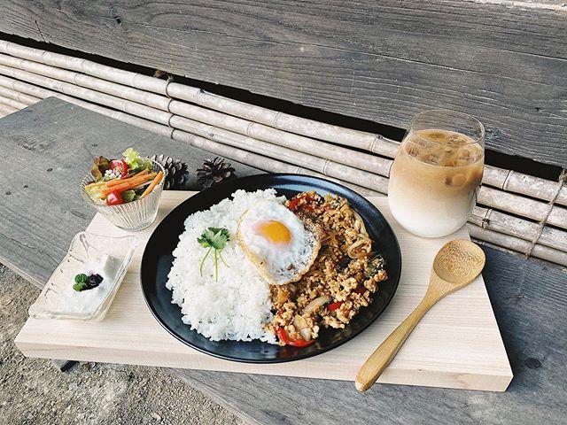 Kapao rice กระเพราไก่ ไข่ดาว