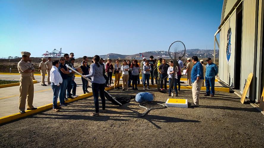 Práctica con redes, Ensenada