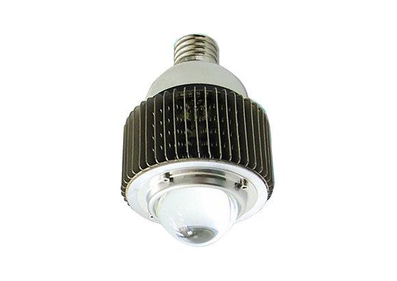 E40 100W 大球泡燈 Spot Light