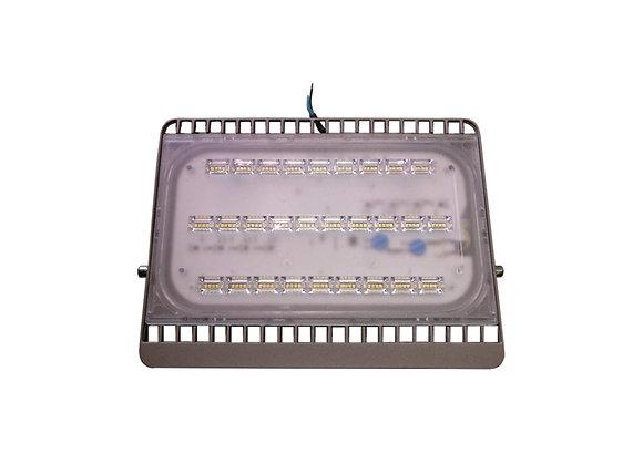 100W LED Waterproof Floodlight
