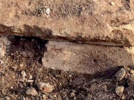 Creepy Witch Marks Found in Remains of Church