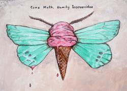 Cone Moth, Family Icecreamidae