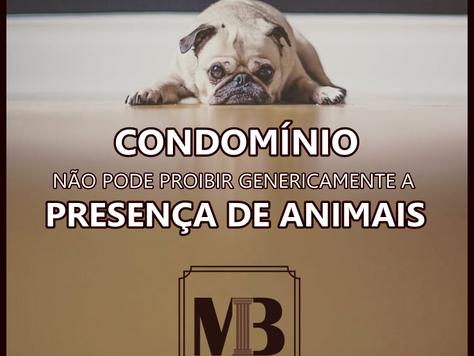 Condomínio não pode proibir genericamente a presença de animais
