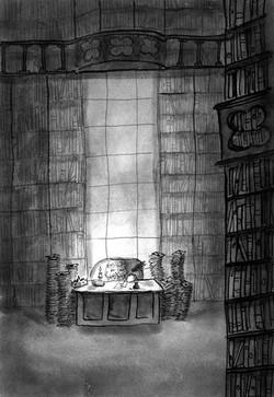 Koning in bibliotheek