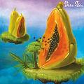 Baba Gris - 'BHAVA' Album Cover