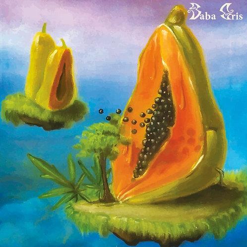 Baba Gris - BHAVA (CD)