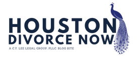 Houston Divorce Now Logo