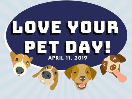 Love your Pet Day Promo