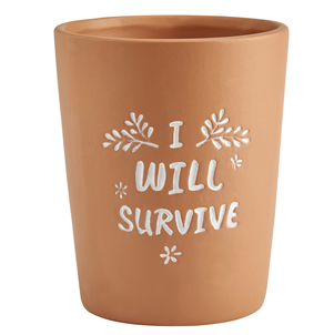 I Will Survive Terracotta Plant Pot