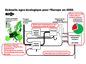 Une agriculture biologique pour nourrir l'Europe en 2050