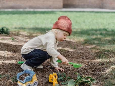 End of term tips: how to create a sensory space in your garden
