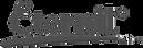 5af719a5779b5a5b177e914e_Logo - Eternit.