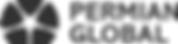 5af719a748189612ddb8c9f1_Logo - Permian