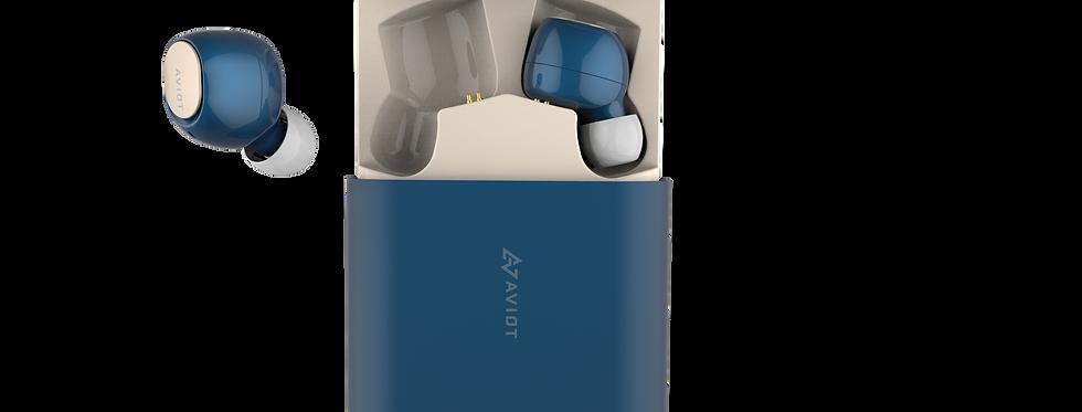 AVIOT TE-D01b True Wireless Earphones Navy
