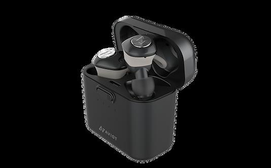AVIOT TE-D01d True Wireless Earphones Black