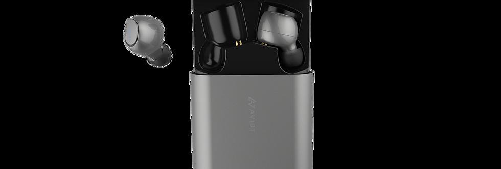 AVIOT TE-D01b True Wireless Earphones Gray